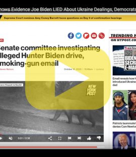 Hunter Biden Emails