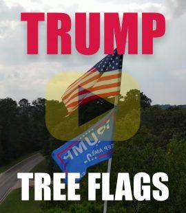 Lufkin Texas Tree Flags Trump