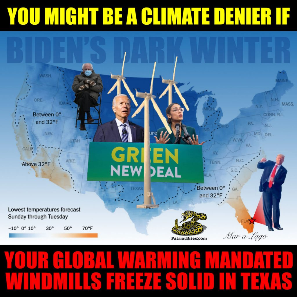 You might be a climate denier if your global warming mandated windmills freeze solid in Texas - Biden's Dark Winter