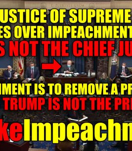 Fake Impeachment