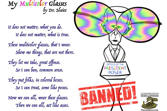 My Multicolor Glasses by Dr. Sluice